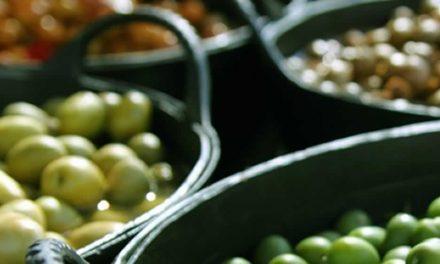 Ronda de negocios internacional del sector olivicola La Rioja-Buenos Aires 2018