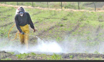 Argentina busca limitar la prohibición en el uso de agroquímicos que impuso la UE desde 2019