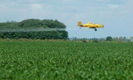 Se reglamentó la ley de gestión de envases vacíos de fitosanitarios: qué requisitos se establecen
