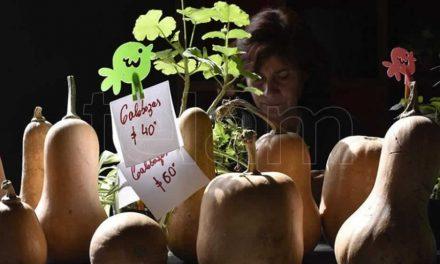 Placeres Regionales: la feria que reúne las delicias del campo argentino