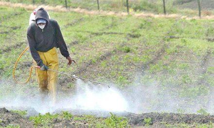 Elaboran 12 principios para el uso de agroquímicos, puntapié para una ley nacional
