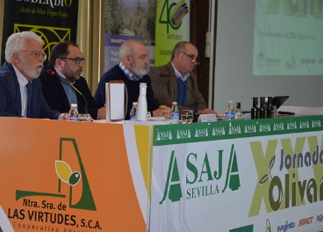 España no podrá compensar la caída de la producción mundial de aceite de oliva