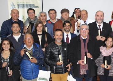 Chile apuesta por la calidad y el consumo de su aceite de oliva